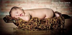 artistic newborn portraits