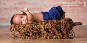 mckinney newborn portraits
